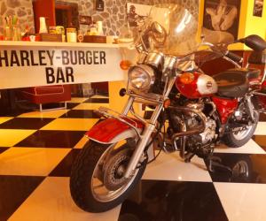 Harleyul Haiducului